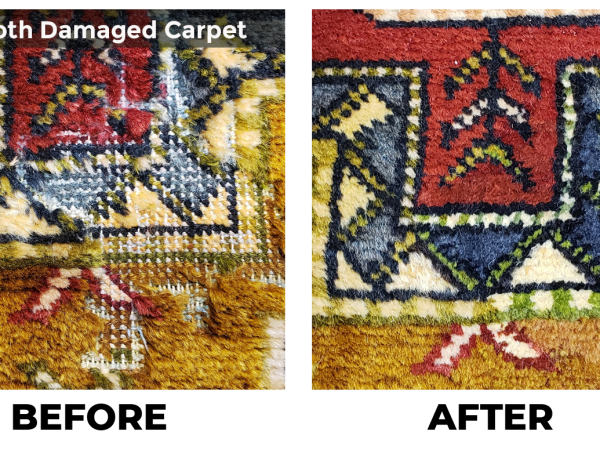 Rugs & Moth Damage: What to Look For